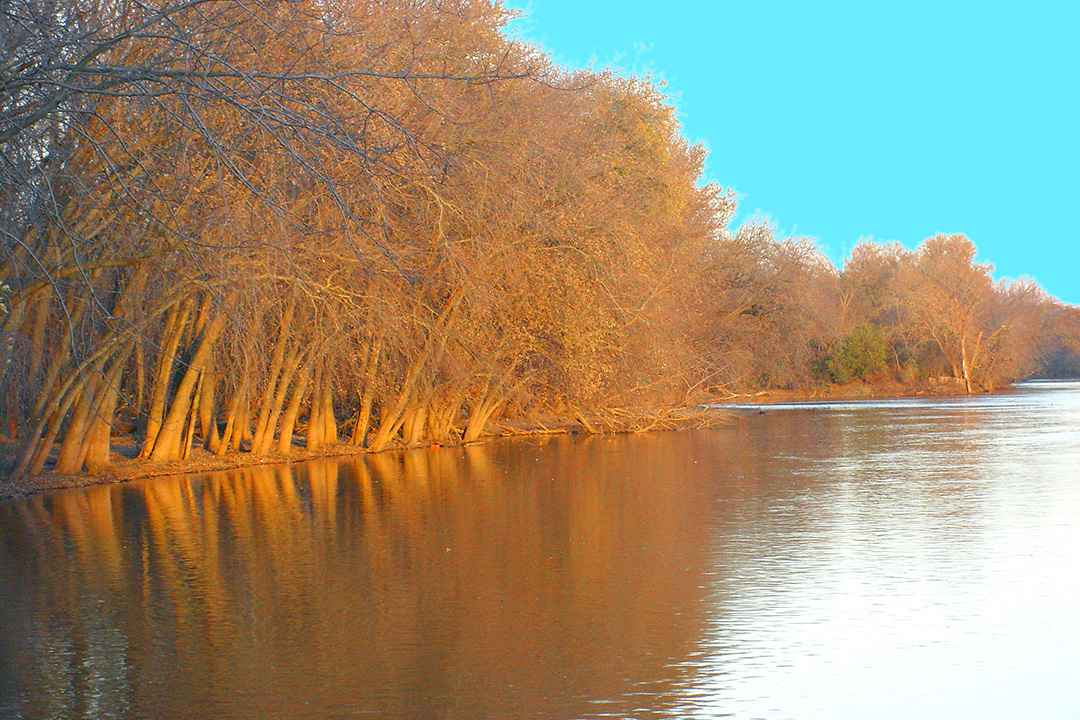 Homes for Sale in Prophetstown IL-Rock River